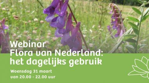 Zoomsessie Flora van Nederland