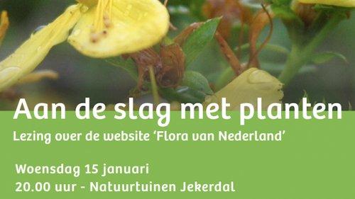 IVN Flora van Nederland